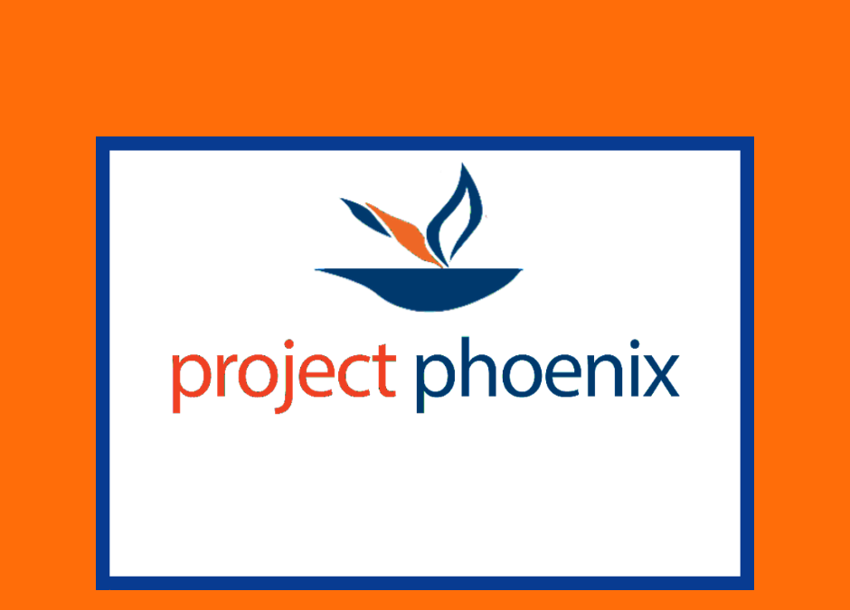 October Project Phoenix Town Hall